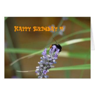 Lavendel mit Hummel Geburtstagskarte Karte