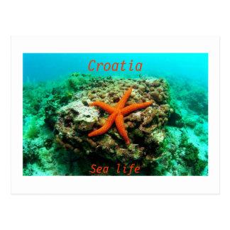 Leben Kroatiens - Meer Postkarte