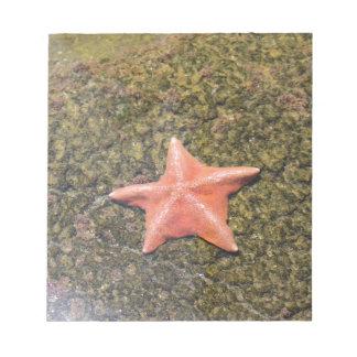 Lebenstarfish.JPG Notizblock