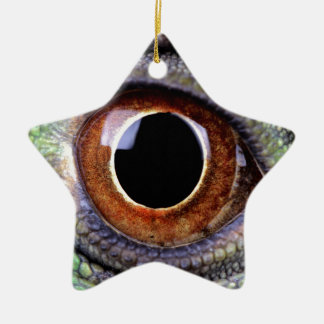 Leguan eye keramik ornament