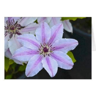 Leidenschafts-Blume Notecard Karte