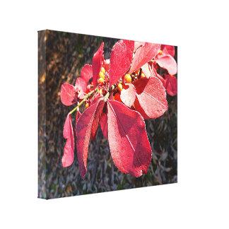 Leinwand-Druck - Rubin-Blätter Leinwanddruck
