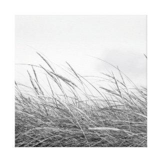 Leinwand - Dünengräser