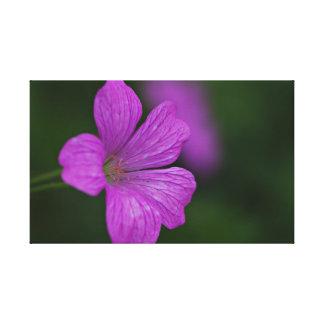 Leinwanddruck Leinwand  Canvas Print  Blume