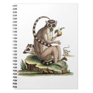 Lemur-Grafik Notizblock