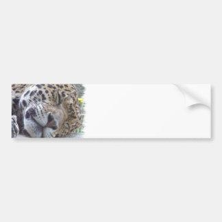 Leopard-Bild-Autoaufkleber Autoaufkleber