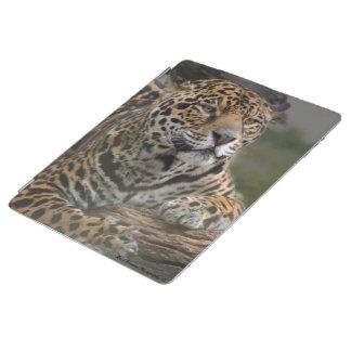 Leopard Ipad 2/3/4 Cover iPad Hülle