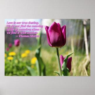 Liebe gelernt mit anderen poster
