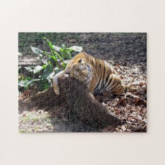Liebe mögen Sie einen Felsen - bengalischen Tiger Jigsaw Puzzle