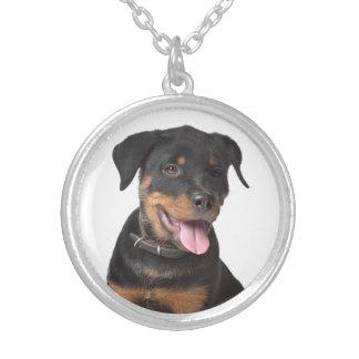 Liebe Rottweiler Welpen-Hundeanhänger-Halskette Halskette Mit Rundem Anhänger