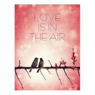 Liebevogelgeschichte Postkarte
