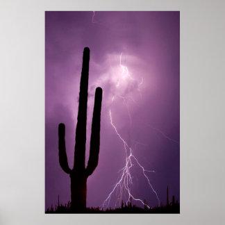 Lila Blitz und Kaktus, AZ Poster