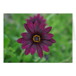 Lila Blumen-Anmerkung Mitteilungskarte