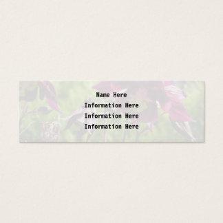 Lila Blumen der Pflaume. Aquilegia. Mini Visitenkarte