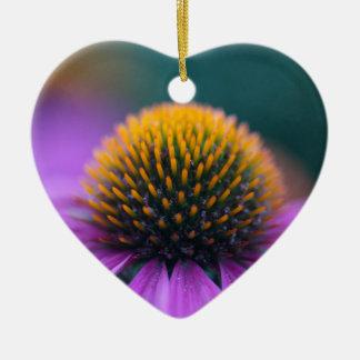 Lila coneflower (Echinacea purpurea) Keramik Ornament