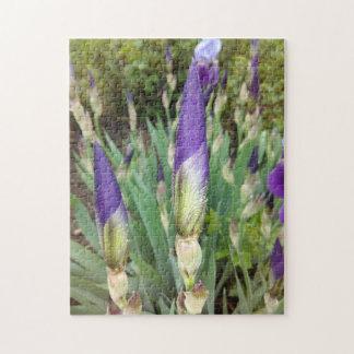 Lila deutsche Iris-Knospen Puzzle