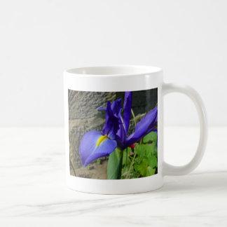 Lila Iris Kaffeetasse