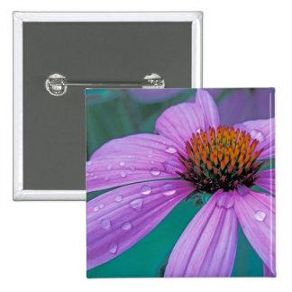 Lila Kegel-Blume mit Wassertropfen Quadratischer Button 5,1 Cm