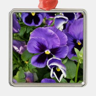 lila Stiefmütterchen Quadratisches Silberfarbenes Ornament