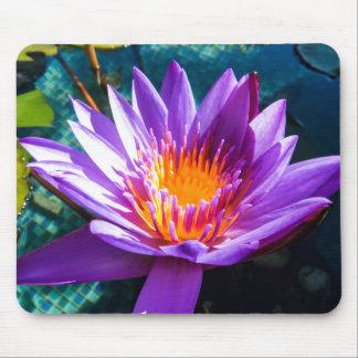 Lila Wasser-Lilien Mousepads