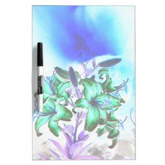 Lilien und Rauch Memo Boards