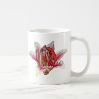 lilly kaffeetasse