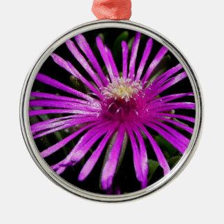 Livingston-Gänseblümchen Rundes Silberfarbenes Ornament