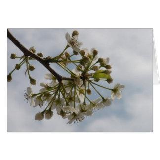 Löschen Sie Innere - Blüten-Gruß-Karte Grußkarte