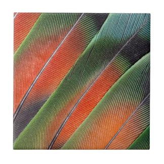 Lovebird-Schwanz-Feder-Entwurf Fliese