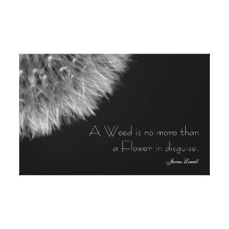 Löwenzahn in Schwarzem u. im Weiß mit Zitat Leinwanddruck