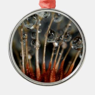 Löwenzahn- und Wassertropfen, CA Silbernes Ornament