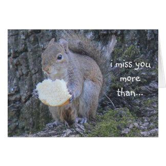 Lustige Eichhörnchenkarte; Fräulein Sie mehr als Karte
