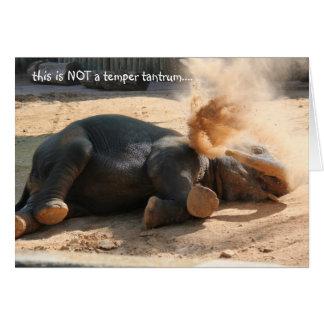 Lustige Elephany Geburtstagskarte, nicht mehr Karte