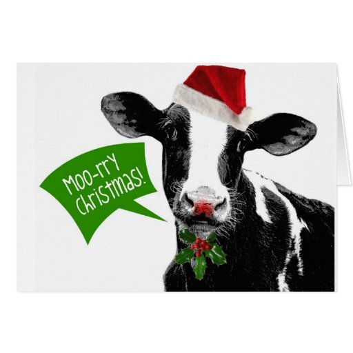 lustige feiertags kuh frohe weihnachten moo rry gru karte. Black Bedroom Furniture Sets. Home Design Ideas
