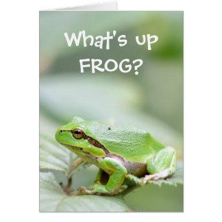 Lustige Froschgrußkarte Grußkarte