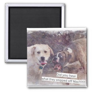 Lustige Hunde flippen heraus Magneten aus Quadratischer Magnet