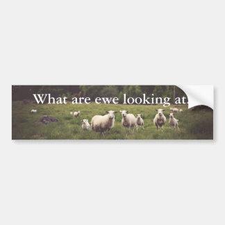 Lustige weiße flaumige Schaf-u. Autoaufkleber
