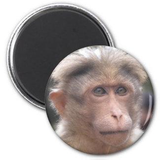Lustiger Affe-Magnet Runder Magnet 5,7 Cm