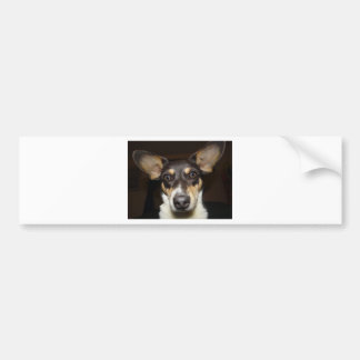Lustiger gegenübergestellter Hund Autoaufkleber