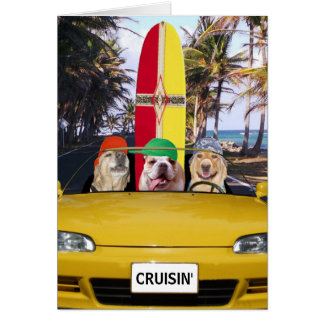 Lustiger HundCruisin Surfer-Geburtstag Grußkarte