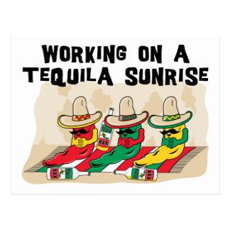 Lustiger mexikanischer Tequila-Sonnenaufgang Postkarten