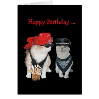 Lustiger Radfahrer-Katzen-Geburtstag Karte