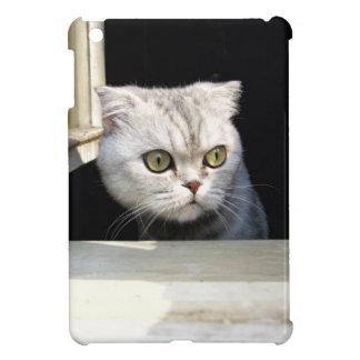 Lustiges Kätzchen iPad Mini Hüllen