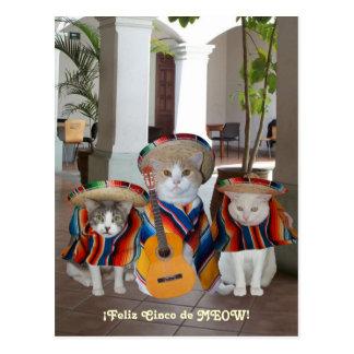 Lustiges Katzen Feliz Cinco De Mayo Postkarten