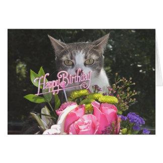 Lustiges Katzen-/Kätzchen-alles Gute zum Grußkarte
