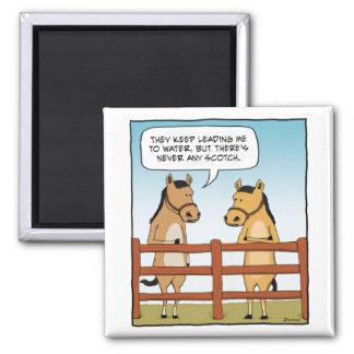 Lustiges Pferd, zum des Magneten zu wässern Quadratischer Magnet