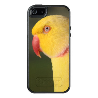 Lutino Inder Ringneck Parakeet-Auge OtterBox iPhone 5/5s/SE Hülle