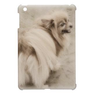 Machen Sie Ihre eigene Haustier-Fotografie Hülle Für iPad Mini