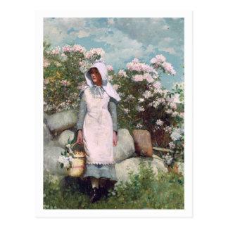 Mädchen und Lorbeer durch Winslow Homer Postkarte