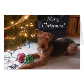 Maddie sagt frohe Weihnachten Grußkarte